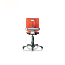 OEM/ODM China for Office Chairs, Executive Chair, Upholstery Fabric Office Chair from China Manufacturer 3Dee Seat Cushioning Ergonomischer Active Office Chair supply to Spain Factories