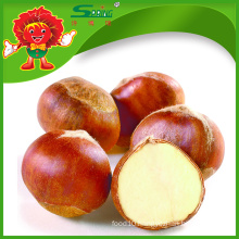 natural planting IQF frozen chestnut wholesale chestnut sell directly from farmer