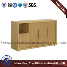 Office Furniture / File Cabinet / Bookcase / Storage Cabinet (HX-4FL106)