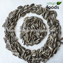 Partenaire commercial de Sunflower Seeds en Afrique