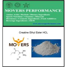 Ester éthylique de la créatine HCl avec N ° CAS: 15366-32-2