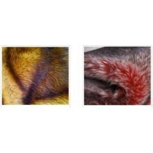 Camel Wolle Matratze natürliche Wolle
