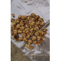 Nozes chinesas em casca / miolo de nozes a granel