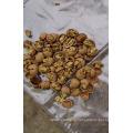 Китайский грецкий орех в скорлупе/Навальный ядрами грецких орехов
