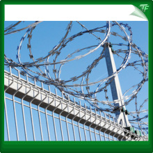 White Concertina Coils Razor Wire