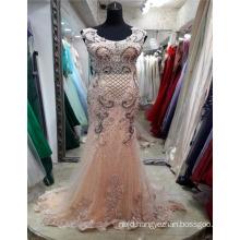 Guangzhou Custom Made Embroided Mesh Elegant Pattern Appliqued Elegant Mermaid Evening Dresses
