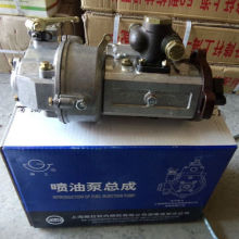 Fuel Injection Pump of 495A Diesel Engine
