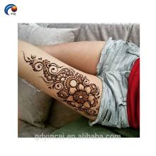 Etiqueta do Henna da beleza Tatuagem do corpo, etiqueta provisória do tatuagem da tribo da noiva