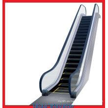 Escalera elevadora con cadena de paso rota
