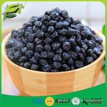 natural bulk freeze dried blueberry