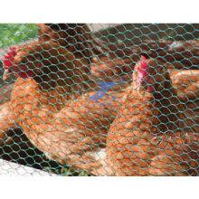 Rede de arame sextavada do aumento da galinha