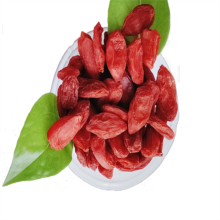 Food Grade New Harvest Baya de goji seca / wolfberry