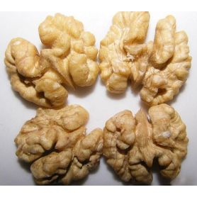 Sell good Healthy walnut kernel