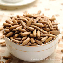 Wholesale Chinese Suppliers Origin Roasted Pine Nuts, Pine Kernel For Sale
