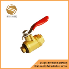 Brass Fixed Ball Valve (TFB-020-04)