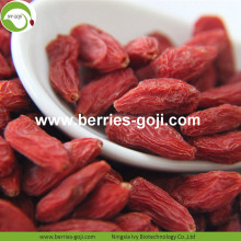 New Harvest Super Food Dried Bayas goji