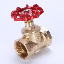Brass Globe Valve with Handwheel (J302) DN40