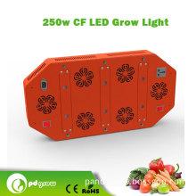 Buy or Regret! ! 6*73.5W COB Grow Light for Mari Growing