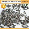 Graines de tournesol grillées chinois de haute qualité