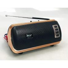 GOLON RX-BT54LS Fm Portable Radio Wireless Speaker Body Power Battery Rechargeable Bt Radio
