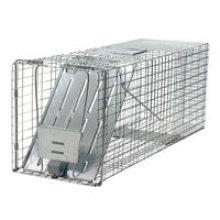 Malla de alambre plegable de metal respetuosa del medio ambiente Ardilla / Ratones / Skunk / Hamster Trap Cages