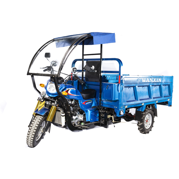 200cc Cargo 3-wheeler Motorcycle South America hot sale