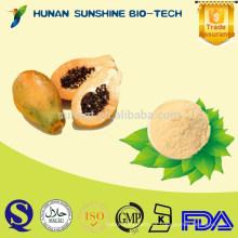 Etiqueta privada sin azúcar añadido y polvo de papaya natural puro para bebidas