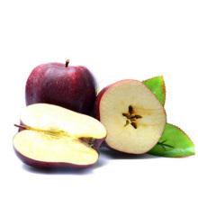 red delicious apple huaniu apple fuji apple wangrun company
