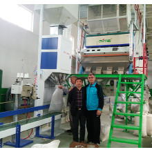 CCD Rice Sorting Machine