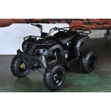 150cc off Road Utility ATV mit Rückwärtsgang (MDL 150 AUG)