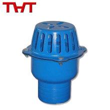 Alle Größen verfügbar DN40-DN350 Kosten Eisen Wasserpumpe Fußventil
