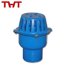 Toutes les tailles disponibles DN40-DN350 coût fer pompe à eau pied soupape