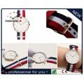 OEM fábrica Dw estilo pulseira de nylon relógio (DC-007)