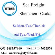 Shenzhen Port LCL Consolidation To Osaka