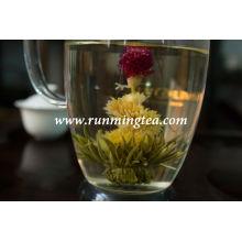 Hua Tang Blanca de floración de té en flor
