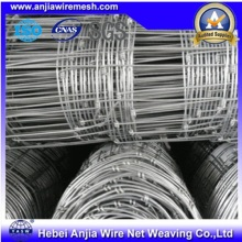 Hot-Dipped Zinc Coated Knotted Wire Mesh Fences