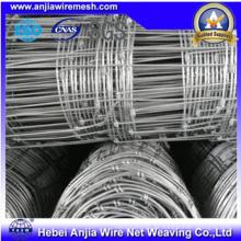 Malla de malla de alambre galvanizado con malla de alambre