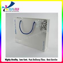 Saco de papel cosmético do projeto simples