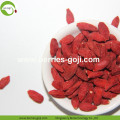 Factory Supply Natural Fruit Products Bulk Goji Berries