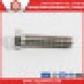 Ss304 / Ss316 Full Thread Bolt / Hex Head Bolt DIN933