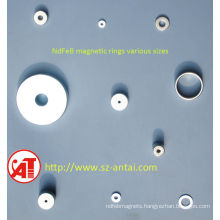 Super Thin NdFeB Magnetic Ring