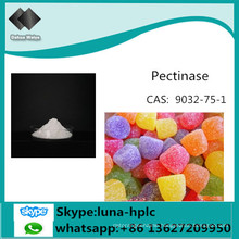 Pectinase China CAS: 9032-75-1 Factory Supply Food Grade Pectinase