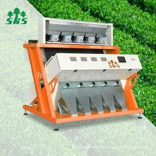 Landwirtschaftsmaschinen CE-Zertifikat Farbsortierer Hersteller CCD Schwarztee Farbsortiermaschine