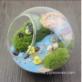 Hanging Glass Globe Ball Pflanze Glas Terrarium