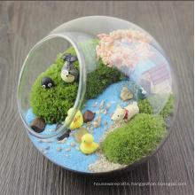 Hanging Glass Globe Ball Plant Glass Terrarium