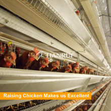 Tianrui Design Automatic H Frame 4 Tiers Layer Poultry Farm Equipment