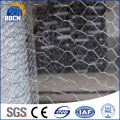 Anping mailles hexagonales/hexagonal grillage maille