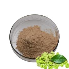 Fournir perdre du poids en poudre d'acide chlorogénique