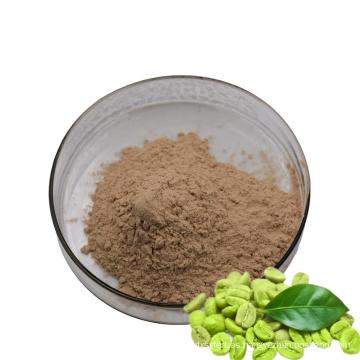 Suministro de polvo de ácido clorogénico para perder peso