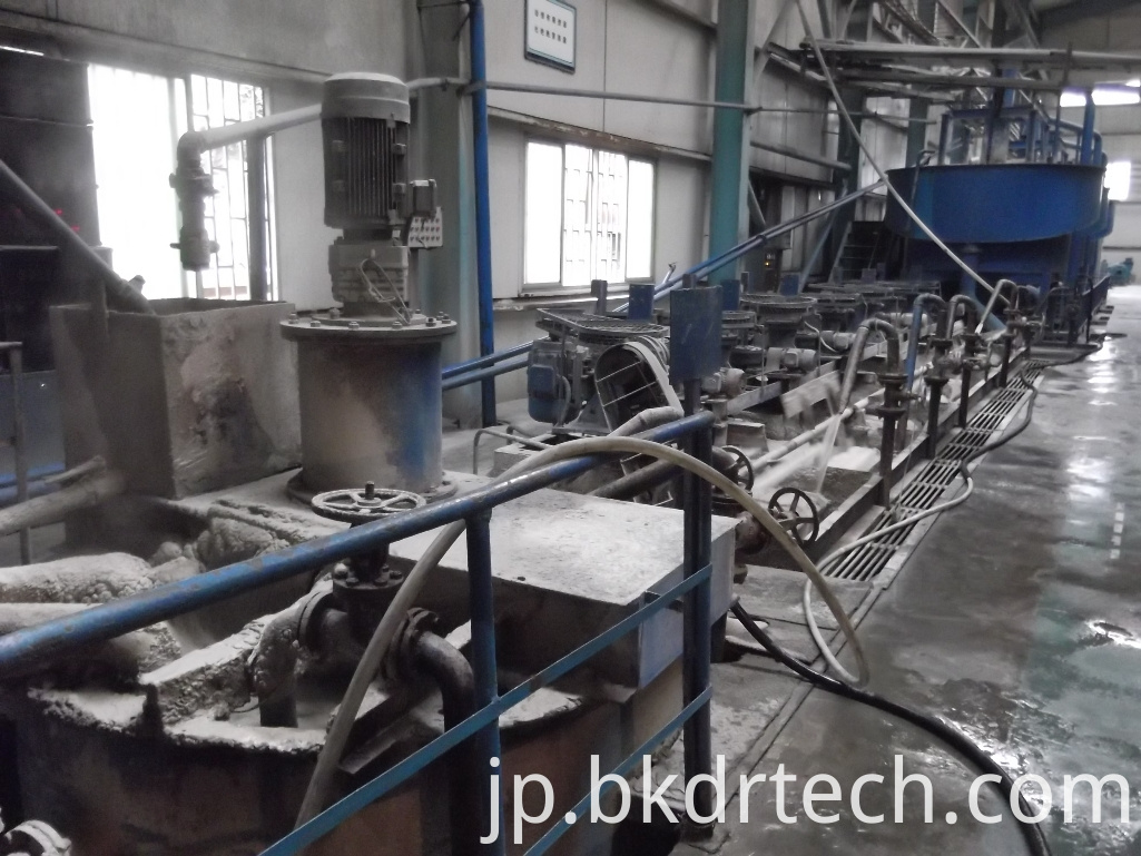Froth slurry pump processing line